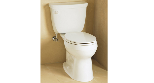 Purchase a Good Toilet