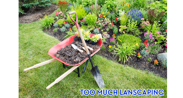 Too Much Landscaping